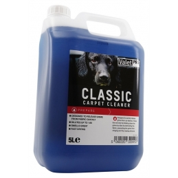 Classic Carpet Cleaner - ValetPro
